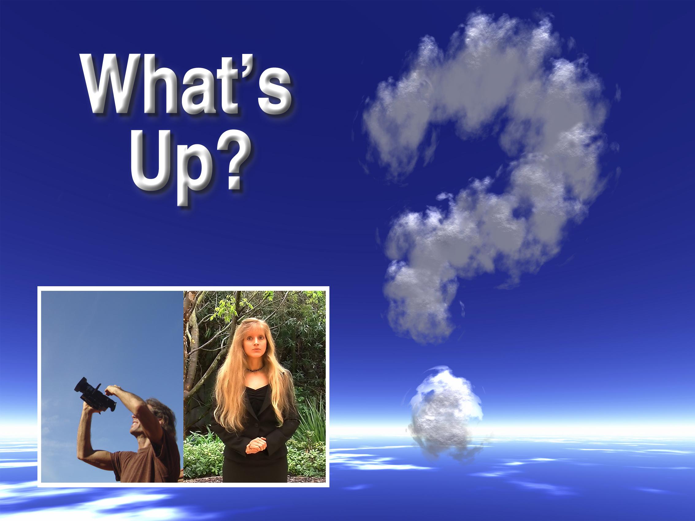 <em>What&apos;s Up?</em>