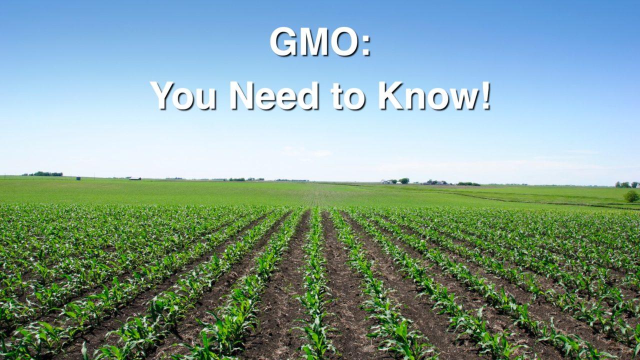 <em>GMO: You Need To Know!</em>